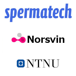 Spermatech renews collaboration with Norsvin R&D supported by NTNU Gjøvik